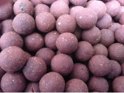 Genesis - Revolution Baits - Active Bait Solutions