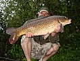 Jacko, Chilham, 13th Aug<br />20lb common