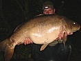 Jacko, Chilham, 1st Sep<br />34lb 04oz leather