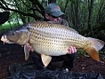 Simon Firth, 3rd May<br /><font color=black>31lb Common</font>